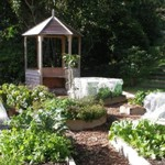fresh food garden
