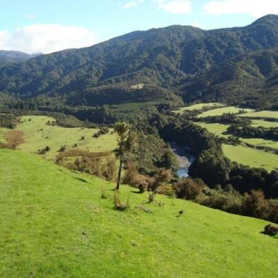Tararua walk