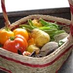 kitchen garden index