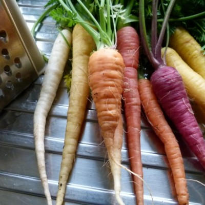 colourful carrots – because you can