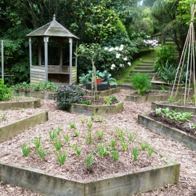 sowing and planting