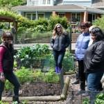 seed sowing workshop