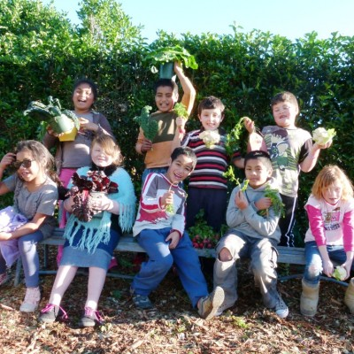 New Zealand school edible garden calendar