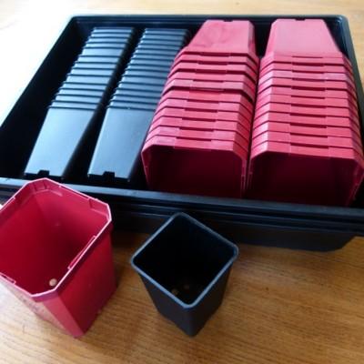 mail order seed pot kits