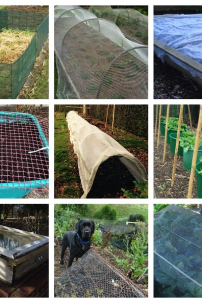 Portable shade and shelter for easier edible growing workshop Thursday 14 February 2019 5:30 – 6.30pm